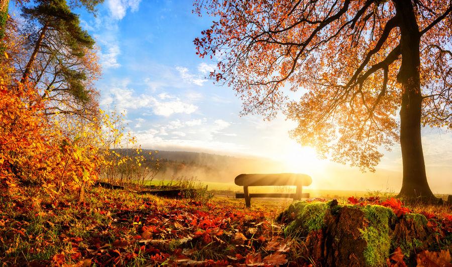 Herbsttagundnachtgleiche – 21.September: Mabon